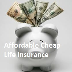 affordable life insurance for seniors over 60