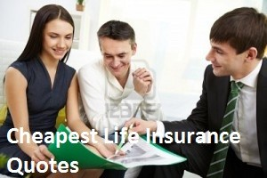 Life Insurance Over 50 Quotes Captivating Cheap Life Insurance Over 50 To 80