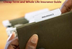 best senior term life insurance rates