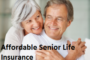 Senior Life Insurance Quote Simple Affordable Senior Life Insurance  Affordable Insurance 50 To 80