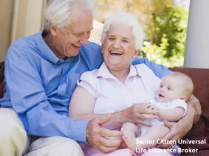 Senior Citizen Universal Life Insurance Broker