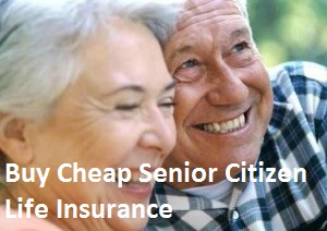Best Life Insurance For Seniors Over 76 to 80